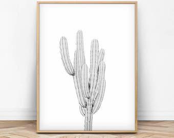 Cactus Wall Art, Cactus Print, Cactus Photo, Cactus Printable, Cacti, White Decor, Black and White, Simple Print, Modern Minimalist