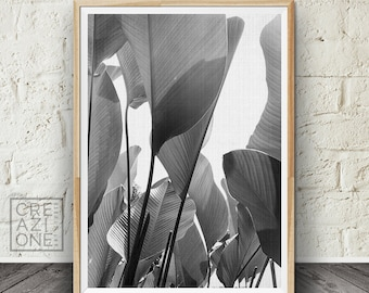 Banana leaves poster, Black and white decor, Tropical print, Palm leaves wall art, Nature photography, Scandinavian, Summer print #046