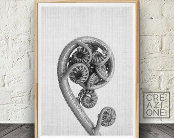 Fern print, Botanical art, Black and white, Plant wall decor, Scandinavian, Younf fern, Spiral, Printable art, Modern decor #008
