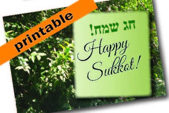 Sukkot card printable sukkot greeting card instent download etsy image 0 m4hsunfo