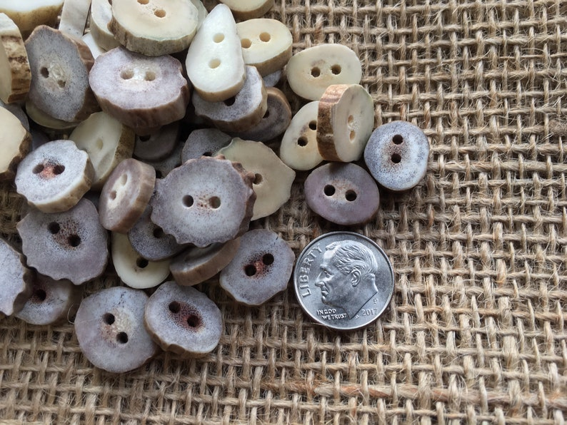 Woodland Country Crafting Bulk Lot Natural Deer Antler Crafting Supply Bone Buttons Sewing 50 Mini Antler Buttons Knitting