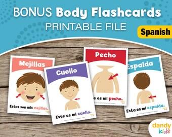 SPANISH - BONUS Body Flashcards / Printable Flashcards / Set of 8 / Educational Flashcards