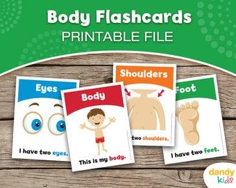 Body Flashcards / Printable Flashcards / Set of 15 / Educational Flashcards