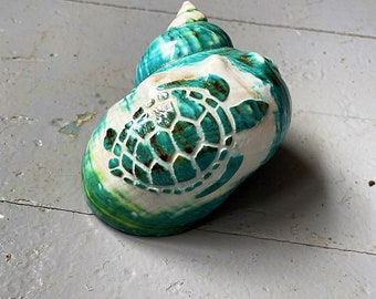 """Jumbo jade turbo shell with carved turtle - hermit crab changing shell - decorative shell - opening widths 2""""-2 1/8"""""""