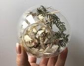 Everlasting Terrarium; Glass Terrarium; Dried Flower Terrarium; Preserved Flowers; Herbarium; Orb Ornament