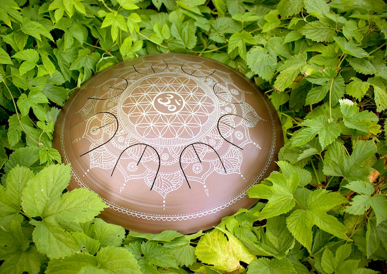 Steel Tongue Drum  GUBAREV drum MINI Overtone Om image 0