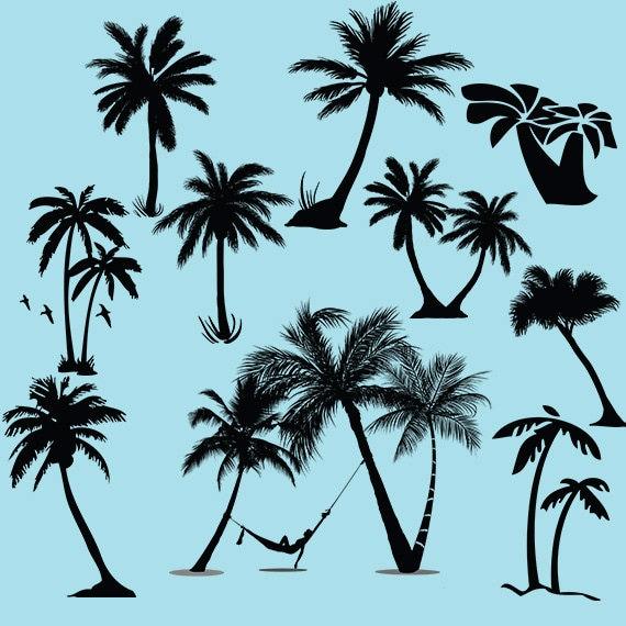 Silhouette De Clipart Palmier Arbre Svg Palmiers Vector Etsy