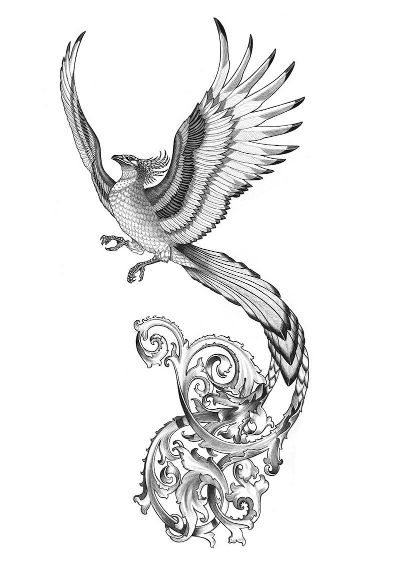 phoenix original drawing | etsy