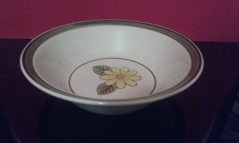 Made in Japan 1455 1960/'S Stoneware By Mikasa Hallkraft Lazy Daisies 9 Bowl