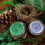 Woodland candle  - Soy wax & cedar wood tick in a small masson jar (Natural, Vagan, Eco-responsable)