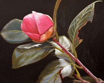 November Rose, oil on panel, 16 x 21 inches, framed