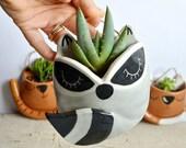 Wall raccoon planter