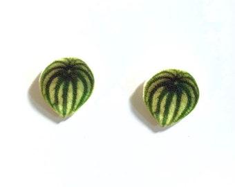 Watermelon Peperomia indoor plant leaf stud earrings handmade gift plant lover