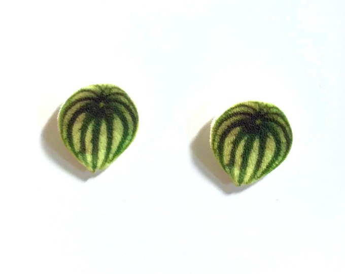 Watermelon Peperomia indoor plant leaf stud earrings handmade gift plant lover