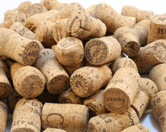 800 Champagne Corks - Premium Real Corks from Europe - Ideal for Craft - Corkboard - Christmas Decorations - Wedding Placecard Holder