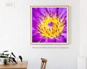Purple Lily Print, Flower Photography Print, Purple Wall Art, Prints, Large Wall Art, Fine Art Photography, Large Art