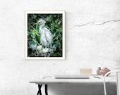 Bird Photography, Modern Nature Photography, Bird Art Print, Bird Gift for Her, Fine Art Photography, Animal Print Wall Art