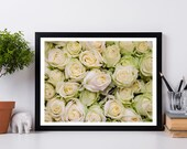 Yellow Roses Photograph, Flower Photography, Botanical Art Print, Shabby Chic Decor, Nature Photography