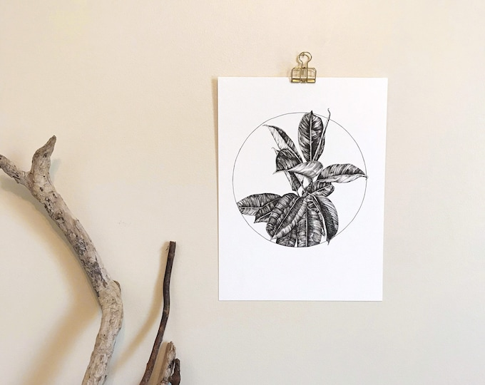 Circle Composition No. 15 Rubber Plant - Original Ink Illustration
