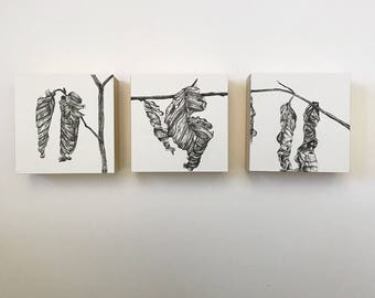 Gifts - Mounted Drawings
