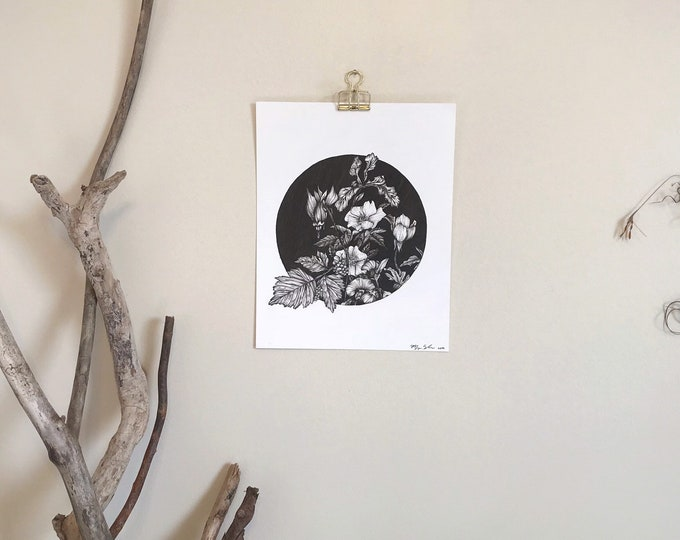 Pacific Northwest Flora - Original Drawing