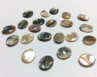 Abalone Shell Cabs Flat 10x8mm (2 pcs)