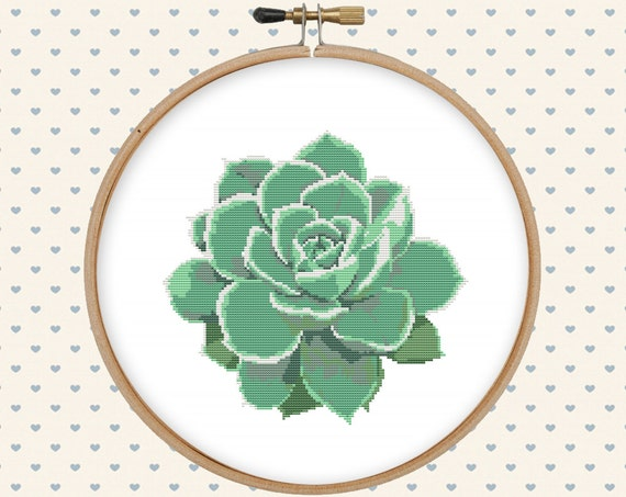 Succulent Cross Stitch Pattern Cross Stitch PDF Instant Etsy Magnificent Stitch Patterns