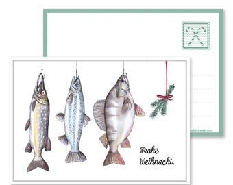 5pack Fish Christmas postcard