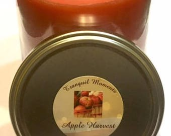 Apple Harvest - Our Apple Harvest is a true ripe apple fragrance. It has year round appeal but is especially nice around apple picking time.