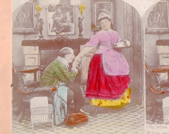 "Genre Tinted Stereoview Photo ""What a Tangled Web We Weave"""