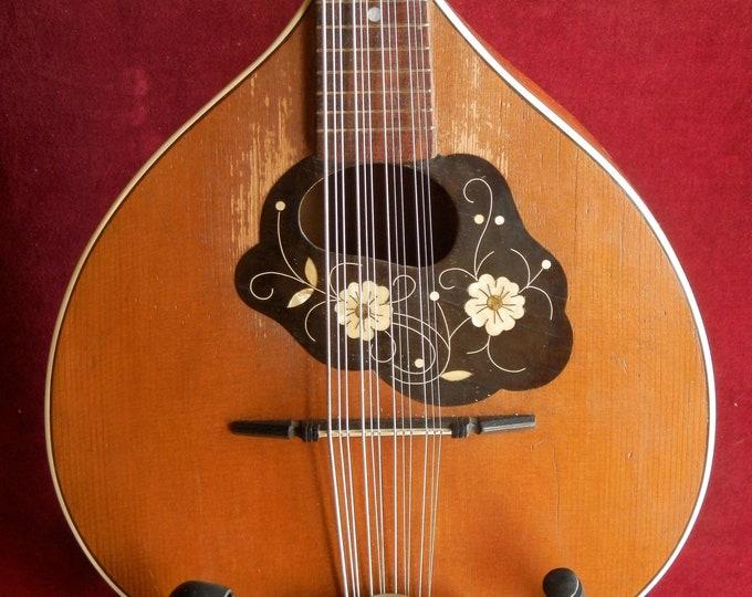 Mandriola or 12 String Mandolin.
