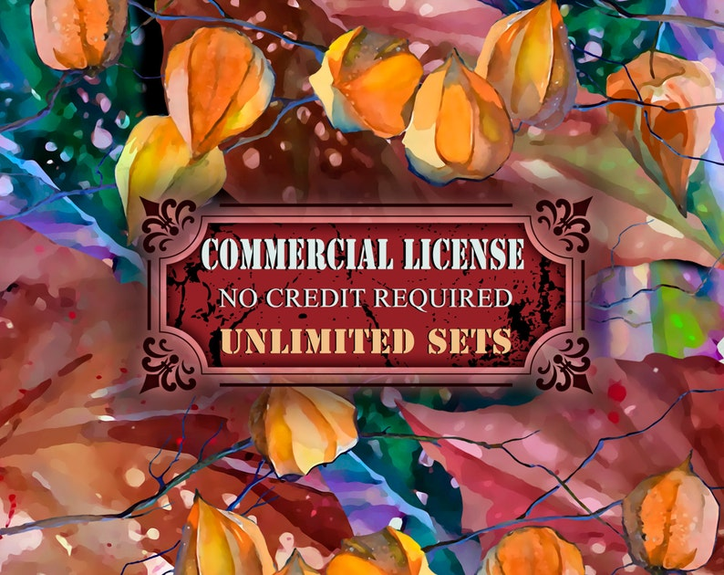 Unlimited present and future sets from IstarArt team Whole Shop Commercial License NO Credit required