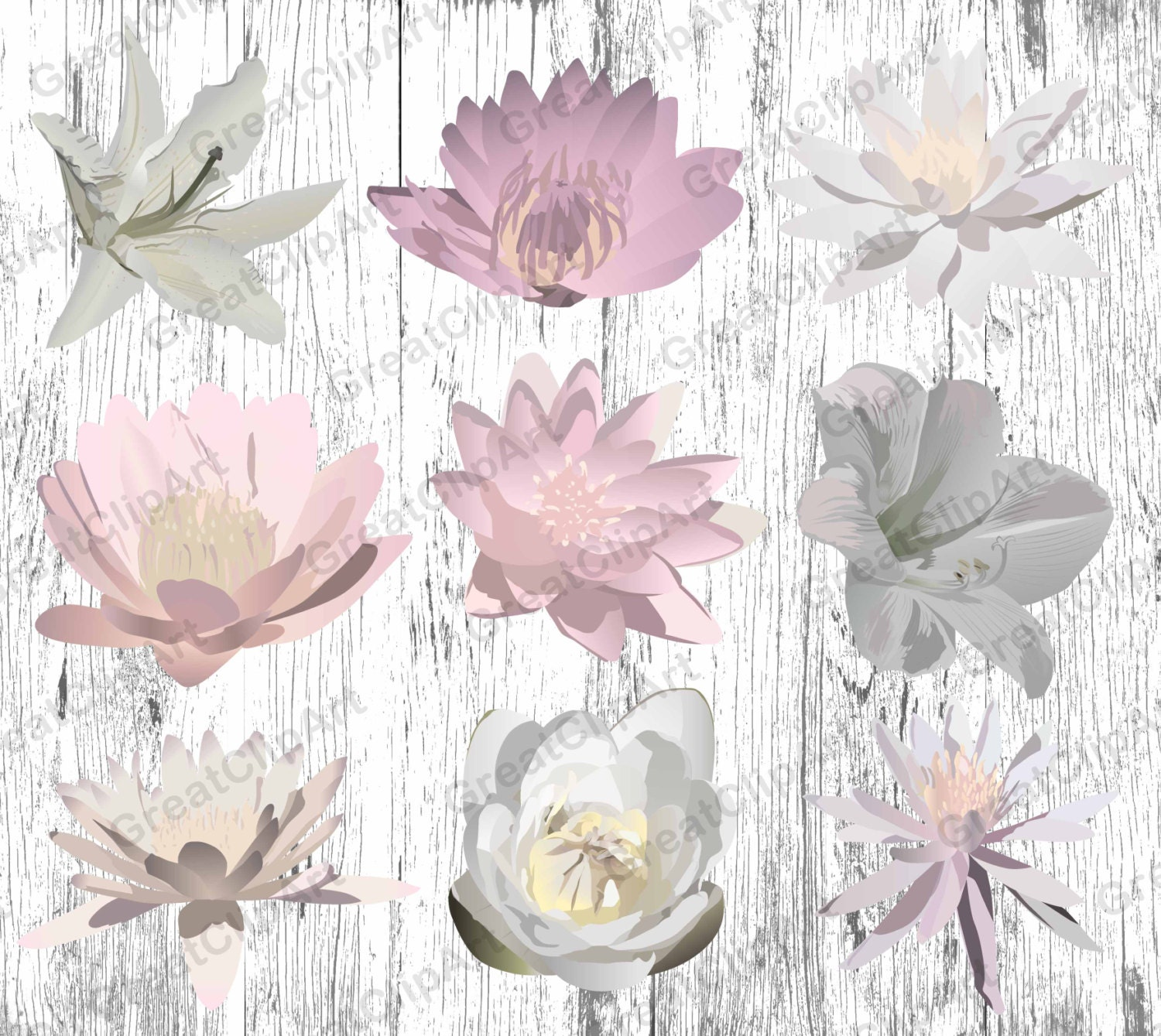 9 Flowers Clipart Set Lotus Flowers Clipart Painted Flowers Etsy