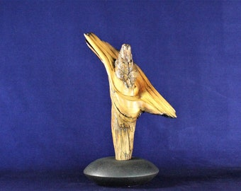 Natural Wood Sculpture, Forest Sculpture , Driftwood Sculpture: Whirling Dervish 20103