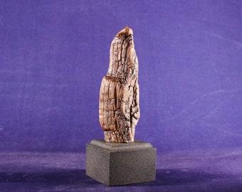 Natural Wood Sculpture, Forest Sculpture , Driftwood Sculpture: Ma Petite 20106