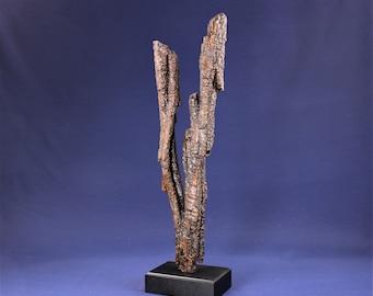 Natural Wood Sculpture, Forest Sculpture , Driftwood Sculpture: 19017 Divergence