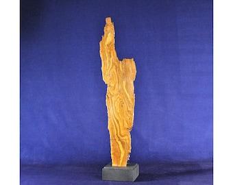 Natural Wood Sculpture, Forest Sculpture , Driftwood Sculpture: River Expression 20102
