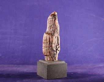 20106 Natural Wood Sculpture, Forest Sculpture , Driftwood Sculpture: Ma Petite 20106