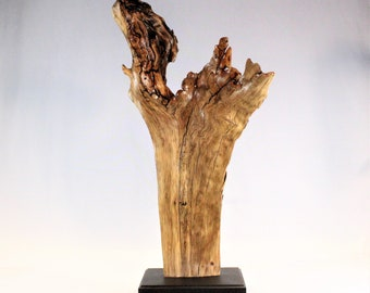 21009 Natural Wood Sculpture, Forest Sculpture , Driftwood Sculpture: Forest Brilliance