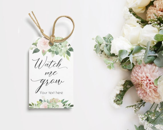 Baby Shower Favor Tags Succulent, INSTANT DOWNLOAD, Watch Me Grow Favor Gift Tags, Favor Tag Bridal Shower Template, Succulent Dusty Rose