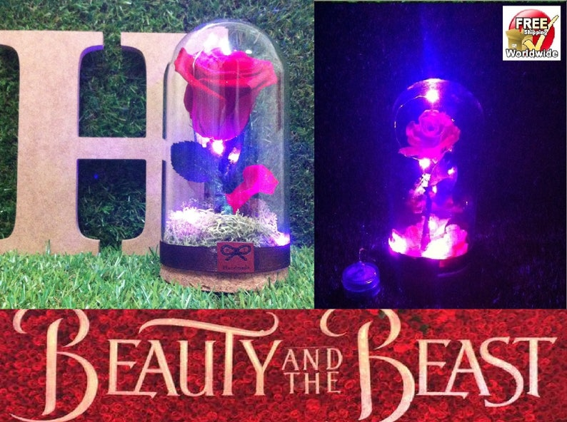 Beauty And The Beast Rose 100 Real Flower Belle Glass Jar Etsy