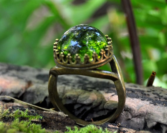 Moss Terrarium Crown Ring