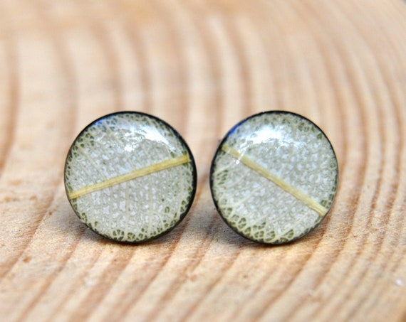 Banksia Leaf Stud Earrings