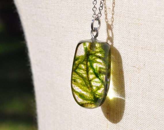 Botanical Resin Semi-Drop Necklace - Feather Moss