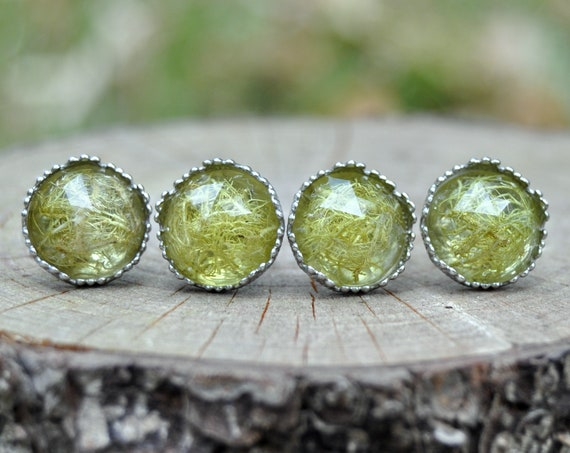 Rose Cut Lichen and Resin Stud Earrings