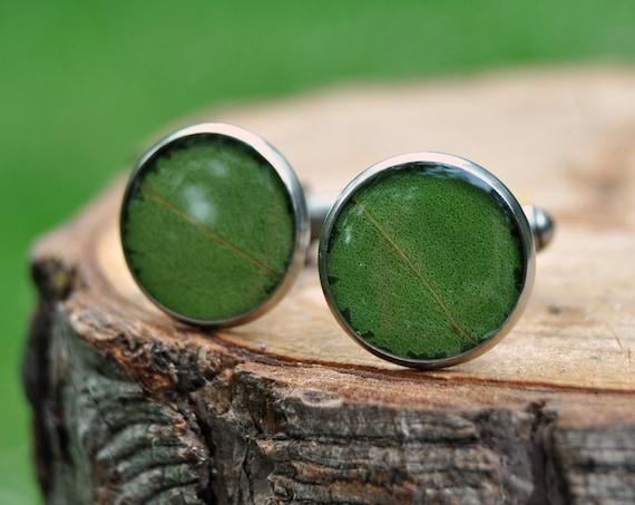Eucalyptus Leaf Cufflinks