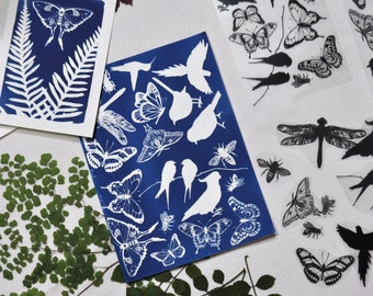 """DIY Sun Print Kit with Butterfly, Bird & Dragonfly Stencils in A6 / 4x6"""" or A5 / 6x8"""" size • Lockdown Gift • Cyanotype Kit • Solar Paper Kit"""