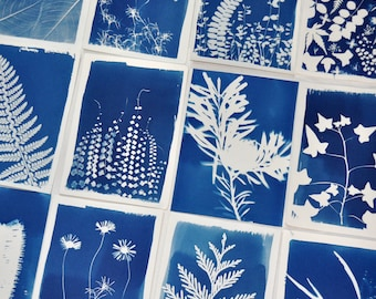 """Deluxe DIY Botanical Print Kit in A6 / 4x6"""" or A5 / 6x8"""" size • Plant Lady Gift • Sun Print Craft Kit • Cyanotype Kit • Craft Gift for Adult"""
