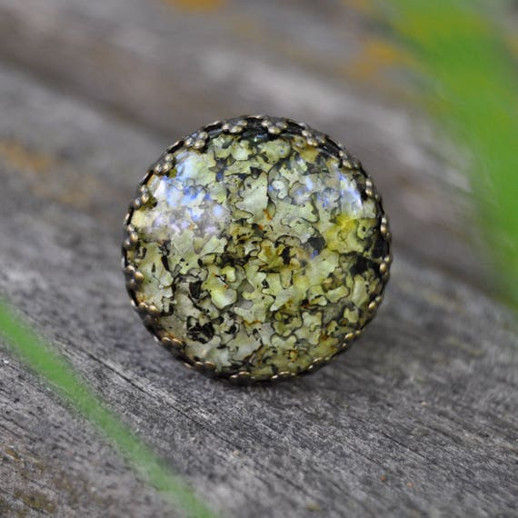 Rock Lichen Terrarium Crown Ring