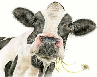 Cow Picture - A4 limited Edition Print